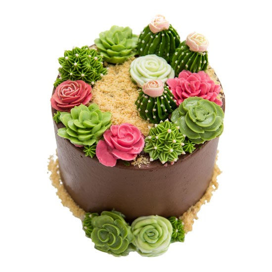 Terrarium Rose Cake - Small